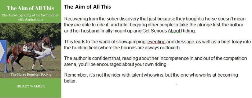 non-fiction-books-bumbler-3-blurb