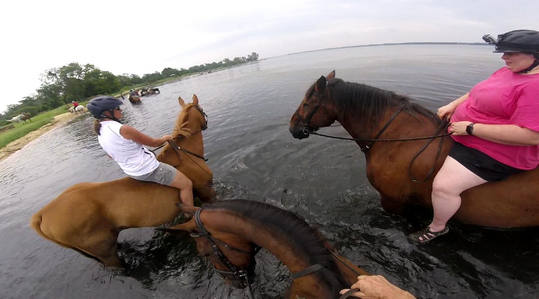 The Three Horseketeers