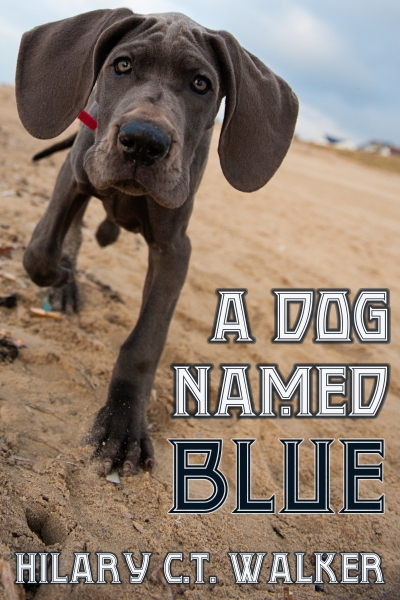 A_Dog_Named_Blue_400x600