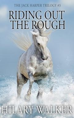 RidingOutTheRough2Small